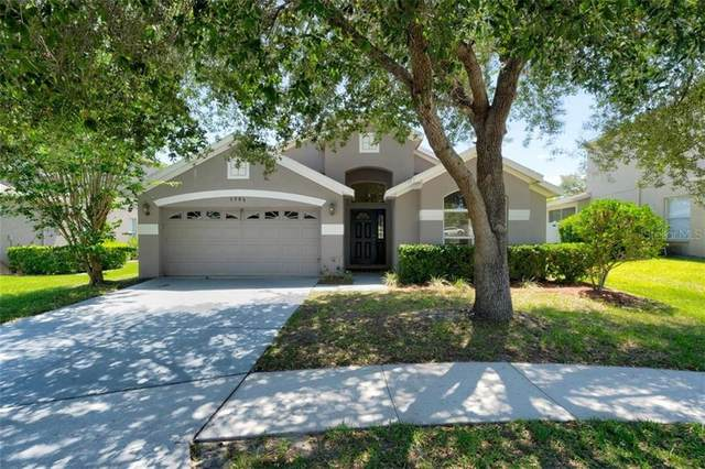 3906 Beaumont Loop, Spring Hill, FL 34609 (MLS #W7823217) :: Griffin Group