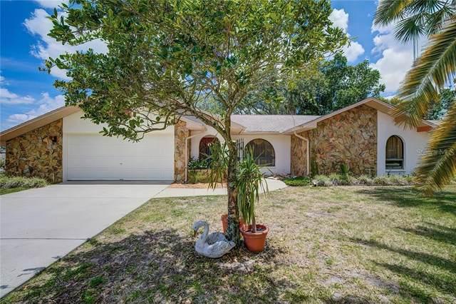 4051 S Oakhurst Drive, Homosassa, FL 34446 (MLS #W7823251) :: Premium Properties Real Estate Services