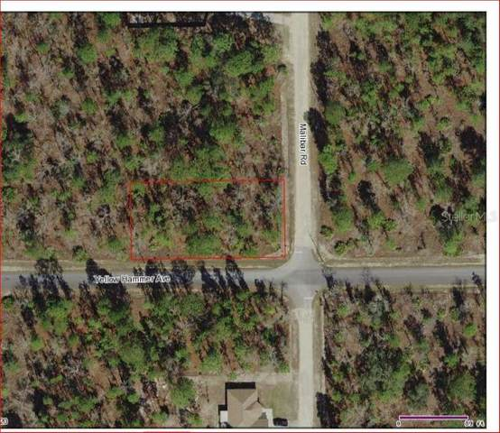 11289 Yellow Hammer Road, Weeki Wachee, FL 34614 (MLS #W7823273) :: Alpha Equity Team