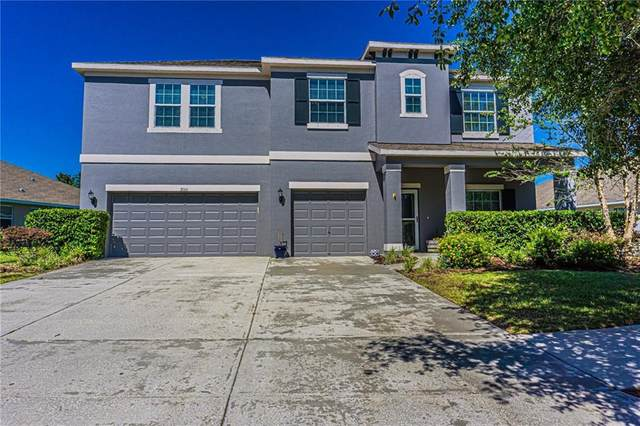 9150 Creedmoor Lane, New Port Richey, FL 34654 (MLS #W7823294) :: Team Bohannon Keller Williams, Tampa Properties