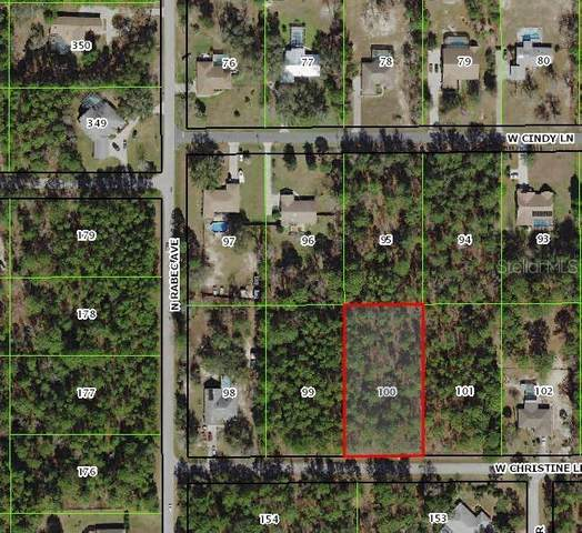 2259 W Christine Lane, Lecanto, FL 34461 (MLS #W7823341) :: Realty Executives Mid Florida