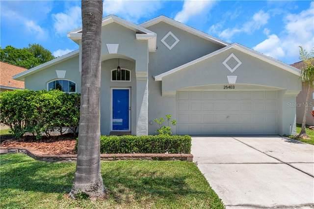 25403 Seven Rivers Circle, Land O Lakes, FL 34639 (MLS #W7823342) :: Baird Realty Group