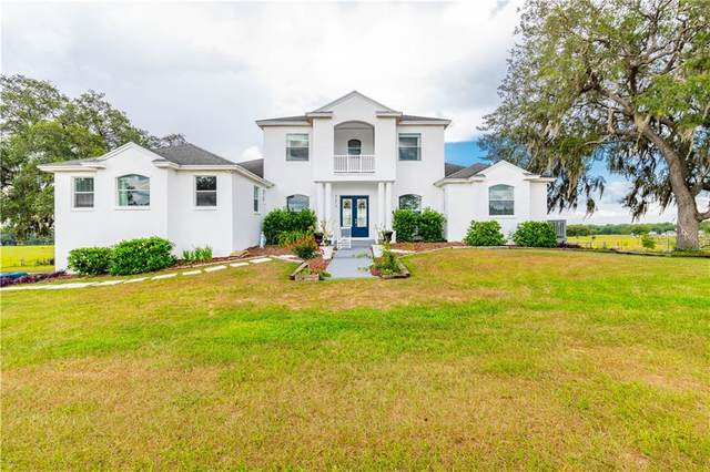 3274 Thoroughbred Drive, Brooksville, FL 34602 (MLS #W7823354) :: Premier Home Experts