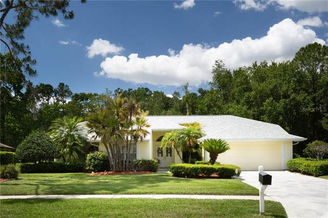 3335 Jadewood Circle, Tarpon Springs, FL 34688 (MLS #W7823355) :: Team Borham at Keller Williams Realty