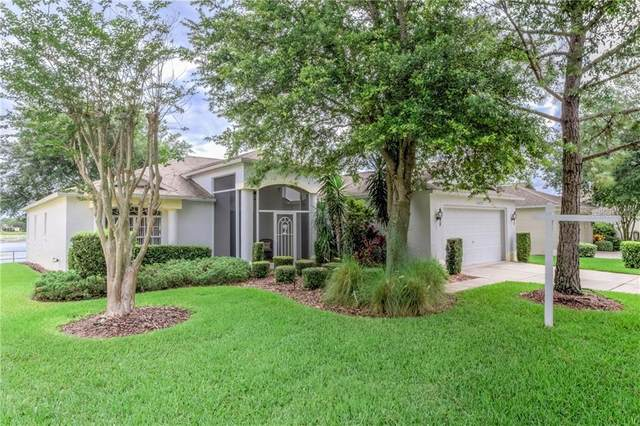 11637 Scenic Hills Boulevard, Hudson, FL 34667 (MLS #W7823356) :: The Duncan Duo Team
