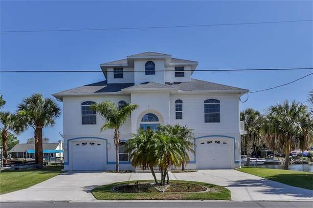 3459 Flamingo Boulevard, Hernando Beach, FL 34607 (MLS #W7823359) :: Delta Realty Int