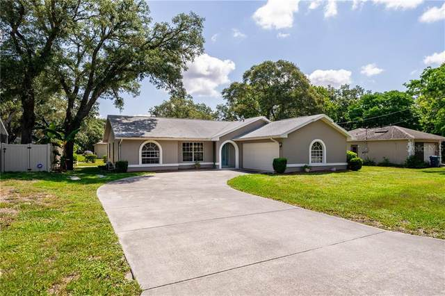 7521 Holiday Drive, Spring Hill, FL 34606 (MLS #W7823375) :: Griffin Group