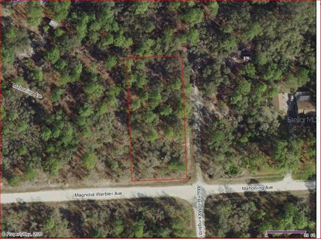 Address Not Published, Weeki Wachee, FL 34614 (MLS #W7823378) :: The Brenda Wade Team