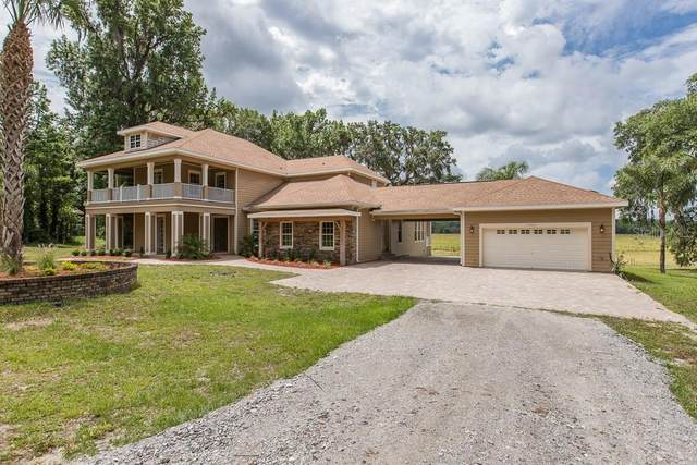 17071 Ponce De Leon Boulevard, Brooksville, FL 34614 (MLS #W7823380) :: Mark and Joni Coulter | Better Homes and Gardens