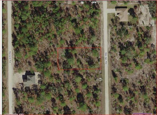 18089 Malibar Road, Weeki Wachee, FL 34614 (MLS #W7823381) :: The Brenda Wade Team