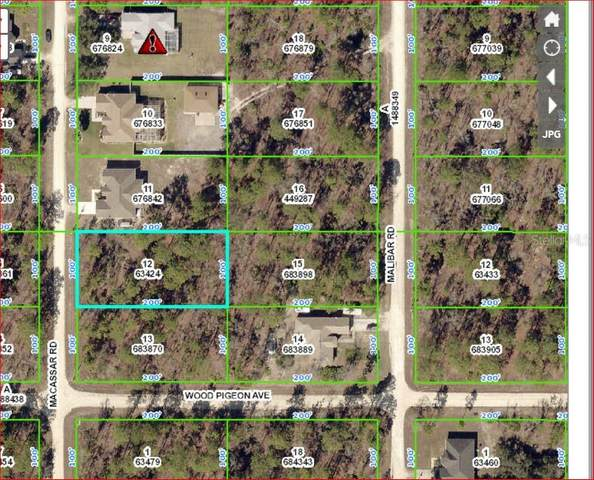 18020 Macassar Road, Weeki Wachee, FL 34614 (MLS #W7823382) :: The Brenda Wade Team