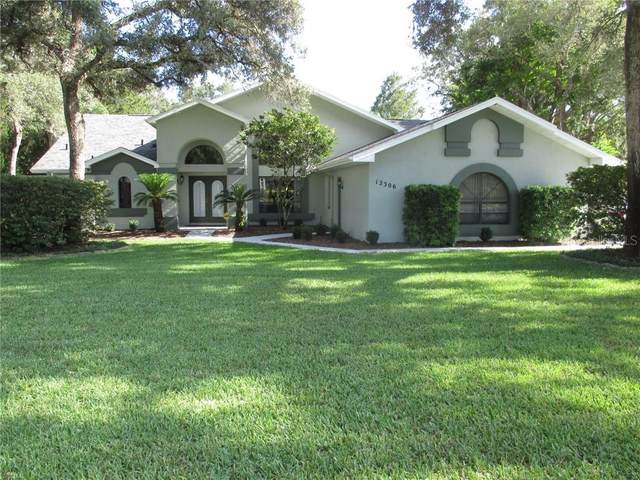 12306 Everard Drive, Spring Hill, FL 34609 (MLS #W7823415) :: Griffin Group
