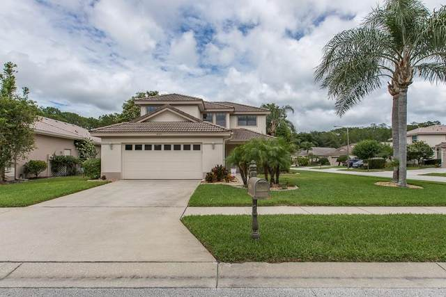 4393 Water Oak Way, Palm Harbor, FL 34685 (MLS #W7823430) :: Burwell Real Estate