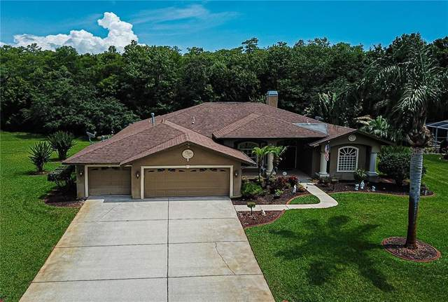 2928 Shipston Avenue, New Port Richey, FL 34655 (MLS #W7823441) :: The Paxton Group