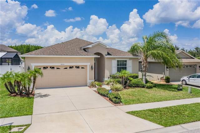 18555 Strombury Drive, Land O Lakes, FL 34638 (MLS #W7823444) :: Mark and Joni Coulter | Better Homes and Gardens