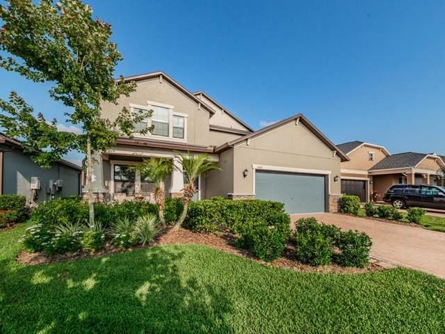 4160 Revival Lane, Land O Lakes, FL 34638 (MLS #W7823450) :: Team Buky