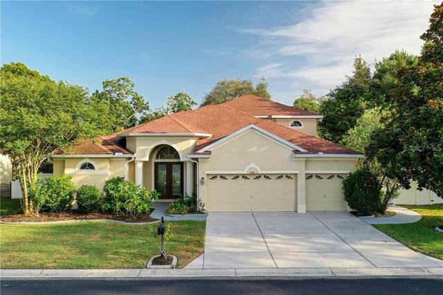 6140 Japonica Court, New Port Richey, FL 34655 (MLS #W7823464) :: Homepride Realty Services