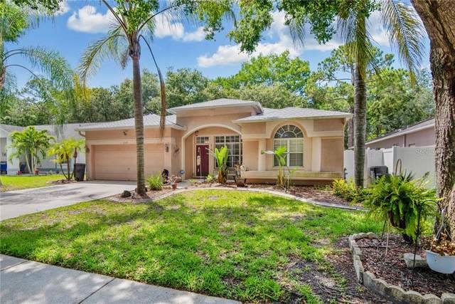 2129 Backwater Trail, Palm Harbor, FL 34685 (MLS #W7823478) :: Premium Properties Real Estate Services