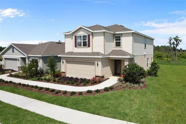 10510 Red Tailed Hawk Lane, Land O Lakes, FL 34638 (MLS #W7823487) :: Team Pepka