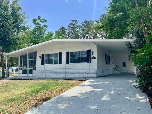 8142 Little Tee Lane, Brooksville, FL 34613 (MLS #W7823492) :: Pepine Realty