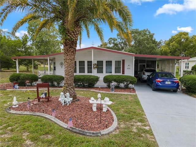 9162 Fontaine Drive, Brooksville, FL 34613 (MLS #W7823503) :: Griffin Group