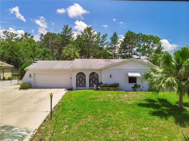 11209 Linden Drive, Spring Hill, FL 34609 (MLS #W7823506) :: Griffin Group
