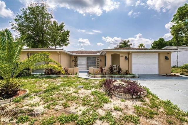 9320 Rainbow Lane, Port Richey, FL 34668 (MLS #W7823521) :: Mark and Joni Coulter | Better Homes and Gardens
