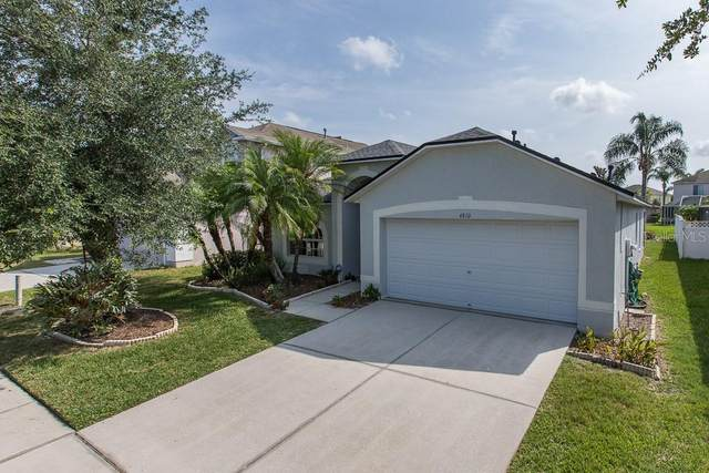 4810 Wessex Way, Land O Lakes, FL 34639 (MLS #W7823531) :: Rabell Realty Group