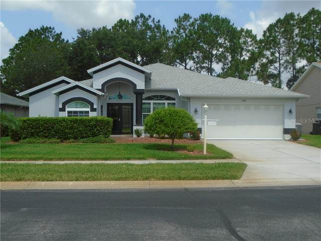 1249 Almondwood Drive, Trinity, FL 34655 (MLS #W7823535) :: Delgado Home Team at Keller Williams