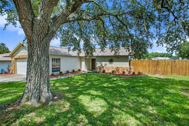 7953 Riverdale Drive, New Port Richey, FL 34653 (MLS #W7823551) :: Young Real Estate