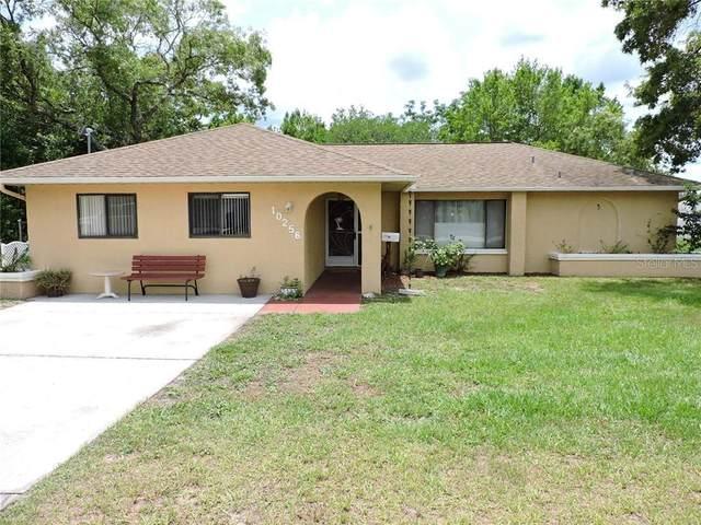 10256 Heathcliff Street, Spring Hill, FL 34608 (MLS #W7823555) :: Team Bohannon Keller Williams, Tampa Properties