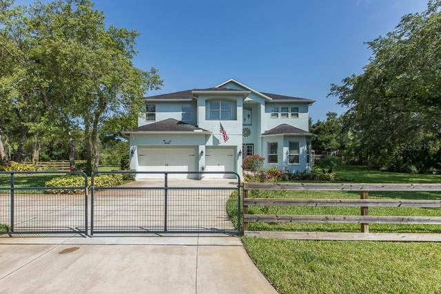 9313 Royal Palm Avenue, New Port Richey, FL 34654 (MLS #W7823561) :: Premier Home Experts