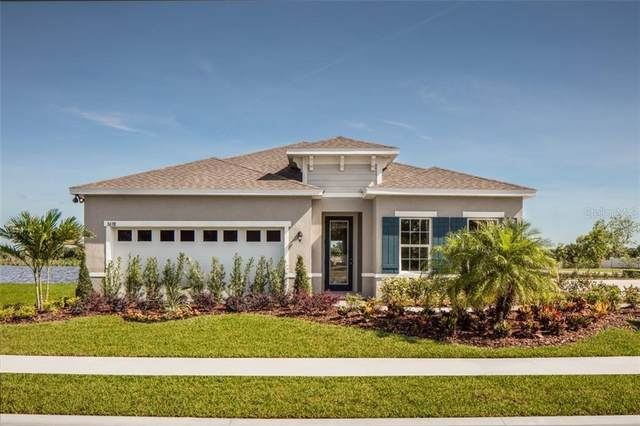 456 Winter Solstice Lane, Mount Dora, FL 32757 (MLS #W7823569) :: Premier Home Experts