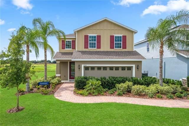 11616 Gold Dust Court, Riverview, FL 33579 (MLS #W7823632) :: Godwin Realty Group