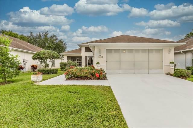 14115 Whitecap Avenue, Hudson, FL 34667 (MLS #W7823706) :: Pepine Realty
