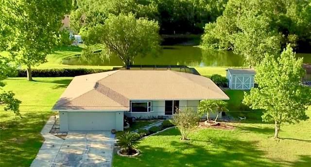 35129 Dolphin Lake Drive, Zephyrhills, FL 33541 (MLS #W7823723) :: Team Bohannon Keller Williams, Tampa Properties