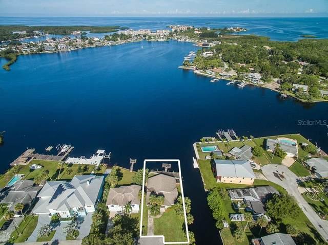 8237 Hayward Lane, Port Richey, FL 34668 (MLS #W7823789) :: The Duncan Duo Team