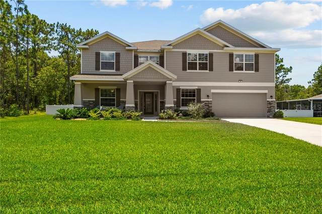 230 Pine Street, Homosassa, FL 34446 (MLS #W7823865) :: The Duncan Duo Team