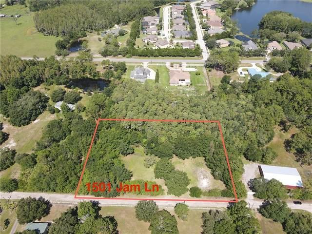 1501 Jam Lane, Odessa, FL 33556 (MLS #W7824001) :: KELLER WILLIAMS ELITE PARTNERS IV REALTY