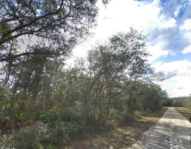 35016 Batesfield Street, Webster, FL 33597 (MLS #W7824224) :: Realty Executives Mid Florida