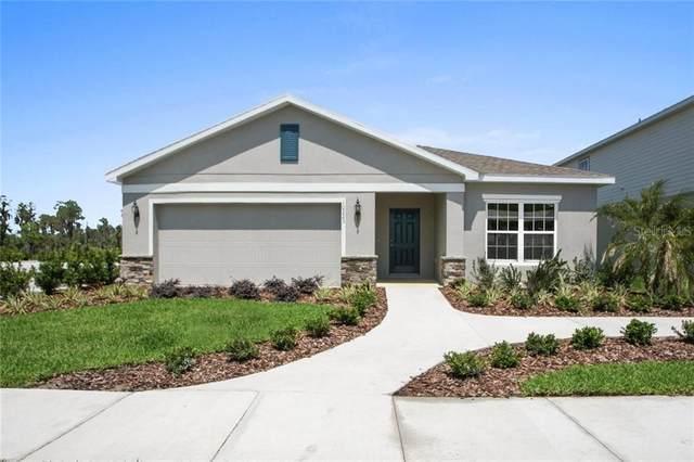 4302 Silver Creek Street, Kissimmee, FL 34744 (MLS #W7824259) :: Pepine Realty