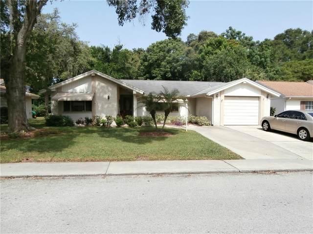 12305 Camp Creek Lane, Bayonet Point, FL 34667 (MLS #W7824372) :: Cartwright Realty