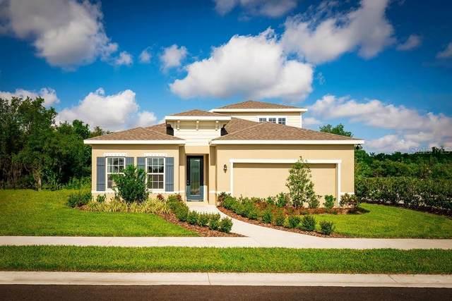 8697 Prairie Creek Drive, Trinity, FL 34655 (MLS #W7824480) :: GO Realty