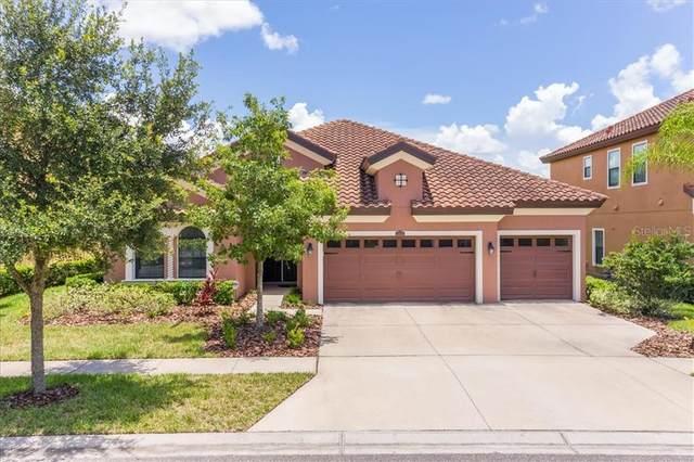 2666 Calvano Drive, Land O Lakes, FL 34639 (MLS #W7824504) :: Keller Williams on the Water/Sarasota