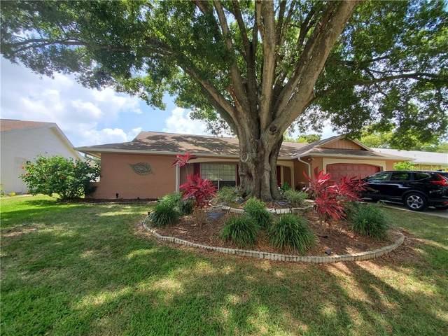 12801 Candlewood Way, Hudson, FL 34667 (MLS #W7824540) :: Dalton Wade Real Estate Group