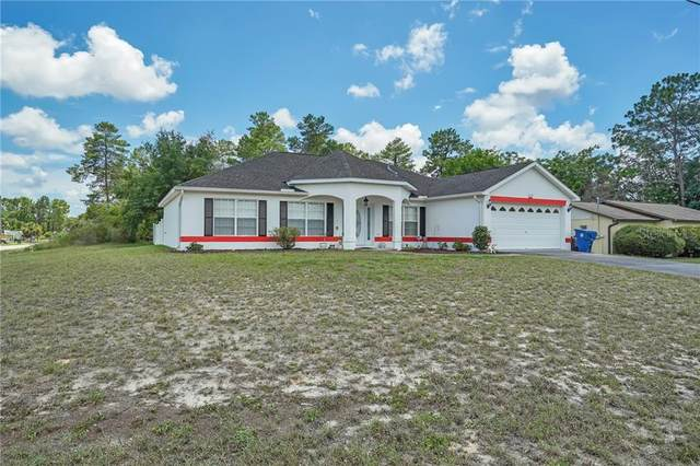 13110 Lola Drive, Spring Hill, FL 34609 (MLS #W7824544) :: Baird Realty Group