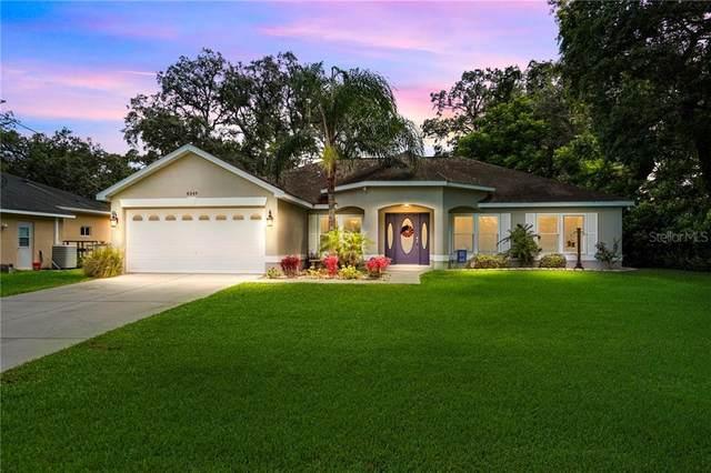 8349 Gibralter Street, Spring Hill, FL 34608 (MLS #W7824546) :: Baird Realty Group