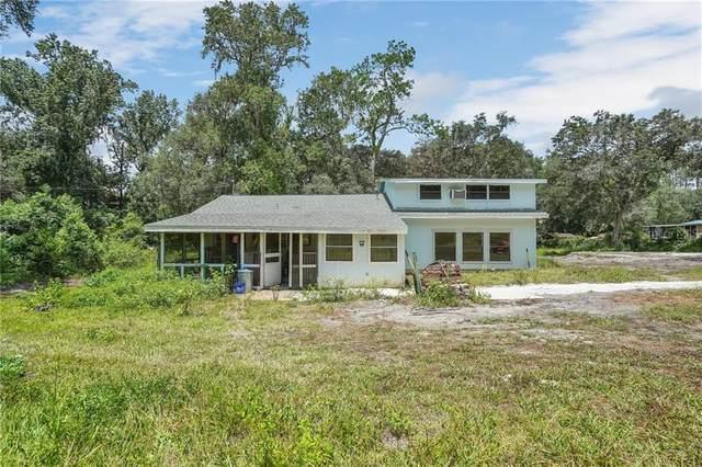 3441 Neff Lake, Brooksville, FL 34602 (MLS #W7824560) :: Rabell Realty Group