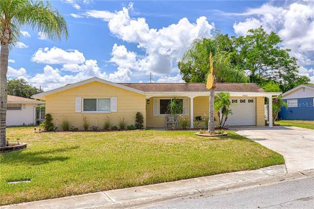 7430 Live Oak Lane, New Port Richey, FL 34653 (MLS #W7824561) :: Carmena and Associates Realty Group
