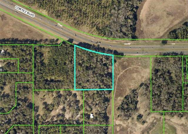 Cortez Boulevard, Brooksville, FL 34601 (MLS #W7824563) :: Griffin Group
